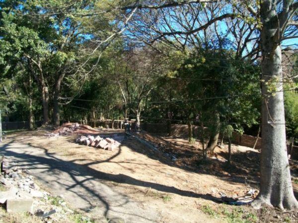 Terreno em Vila Conceição - Foto 2