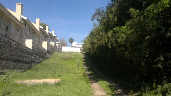 Terreno, Nonoai, Porto Alegre (LP504) - Foto 5