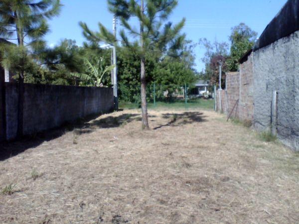 Terreno em Ponta Grossa - Foto 3