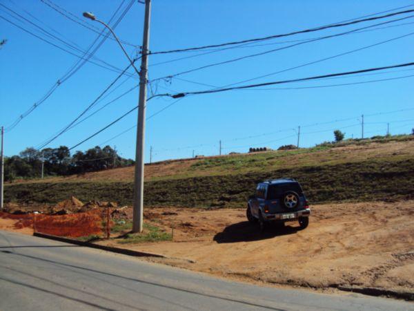Bela Vista Sul - Terreno, Vila Nova, Porto Alegre (LP727) - Foto 5
